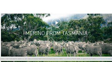 merinowool-from-tasmania-9a8e4ec5-52b1-4154-a74d-47c51d576426